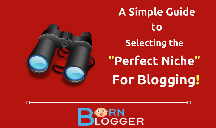 5 Killer Ways To Select A Perfect Niche For Blogging!